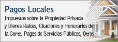 Pagos Locales - Impuestos sobre la Propiedad Privada y Bienes Raíces, Citaciones y Honorarios de la Corte, Pagos de Servicios Públicos, Otros Pagos Locales